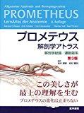 プロメテウス解剖アトラス おすすめ解剖学教科書